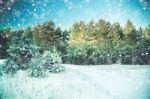 Specialistų patarimai: kaip kasti sniegą, kad darbas nesibaigtų trauma